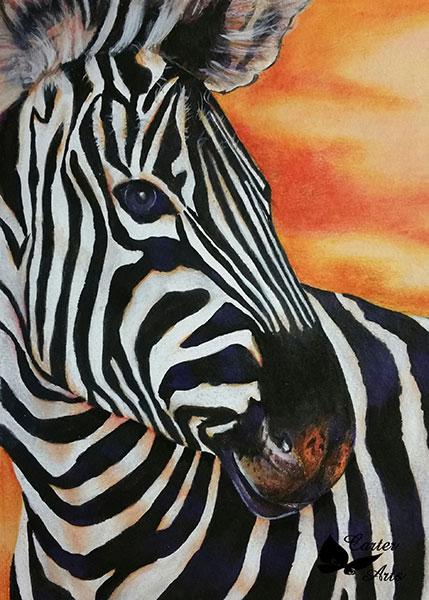 Zebra-Afrika-for-slyvie-carter-artist-web