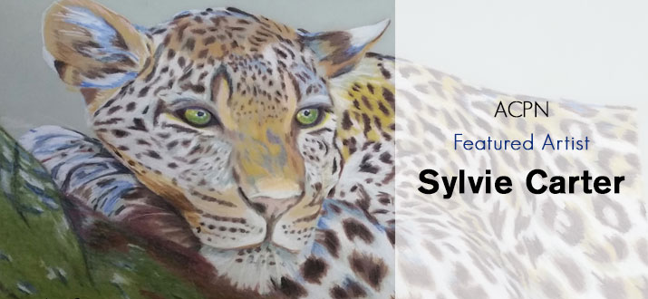 Featured Artist- Sylvie Carter